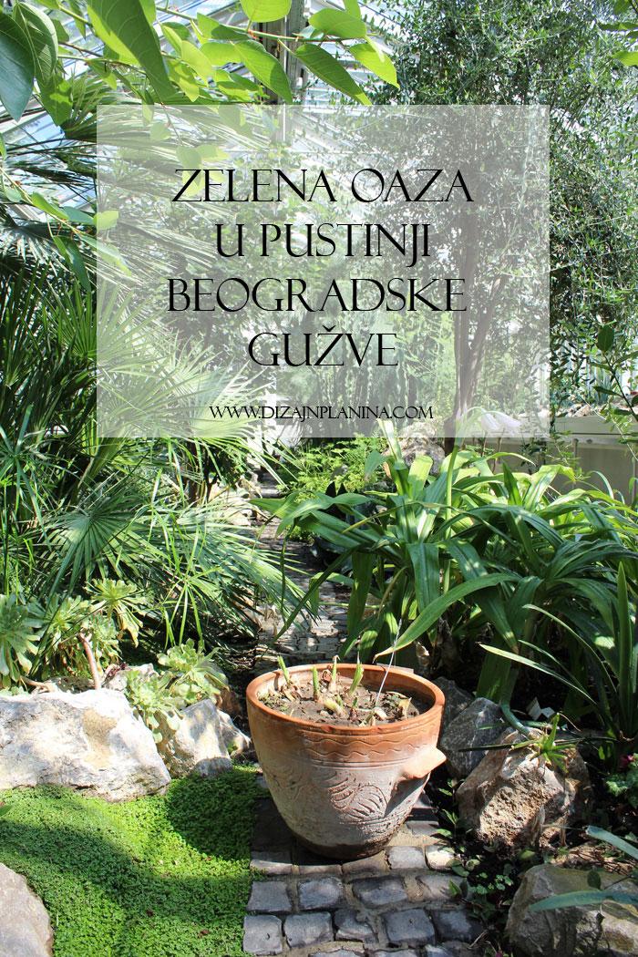 Botanicka basta Beograd