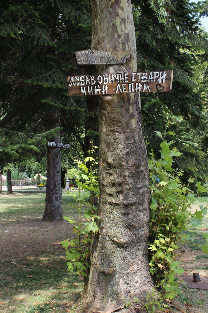 Ivanjica daje savete za srecniji zivot na natpisima na drvecu
